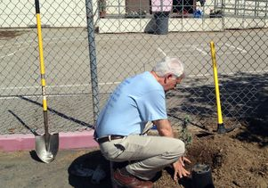 Click to open the large image: Chancellor Block at Volunteer Day
