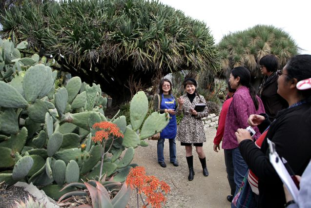 Docents Wanted At Ucla S Mildred E Mathias Botanical Garden Ucla