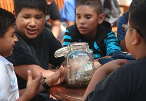 Students learn about plants
