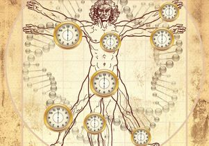 Click to open the large image: Biological clock