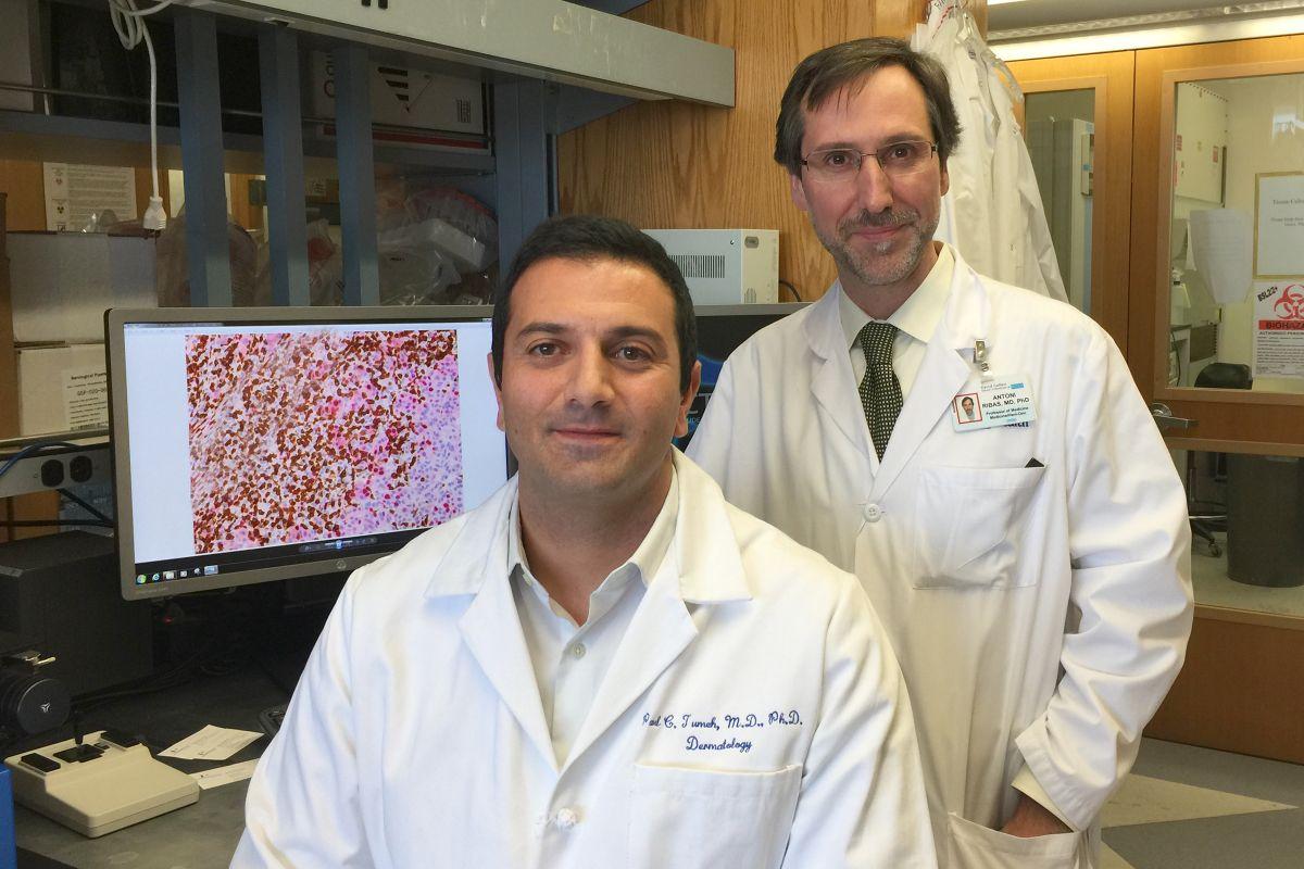 Dr. Antoni Ribas and Dr. Paul Tumeh