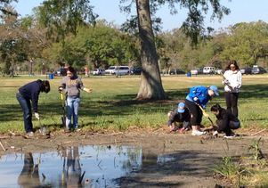 Students plant irises in New Orleans