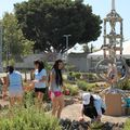 UCLA volunteers help beautify Watts Towers site