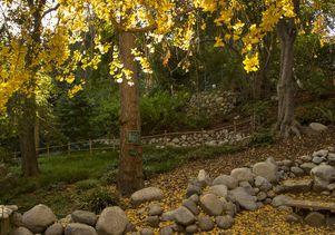 Ucla S Mildred E Mathias Botanical Garden Gets 5 Million From