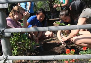 Students enrolled in a class on urban agriculture in LA