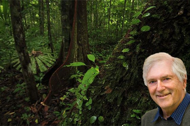 Stephen Hubbell - rain forest