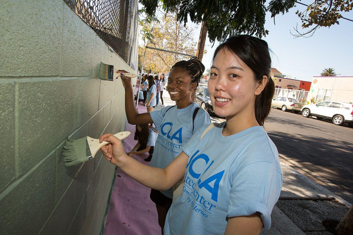 Volunteer Day 2014