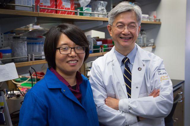 Xinshu (Grace) Xiao and David Wong