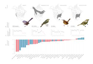 Click to open the large image: bird-map-graphic