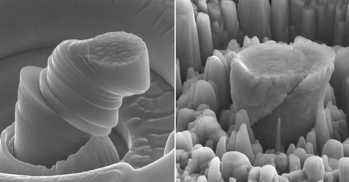 magnesium comparison