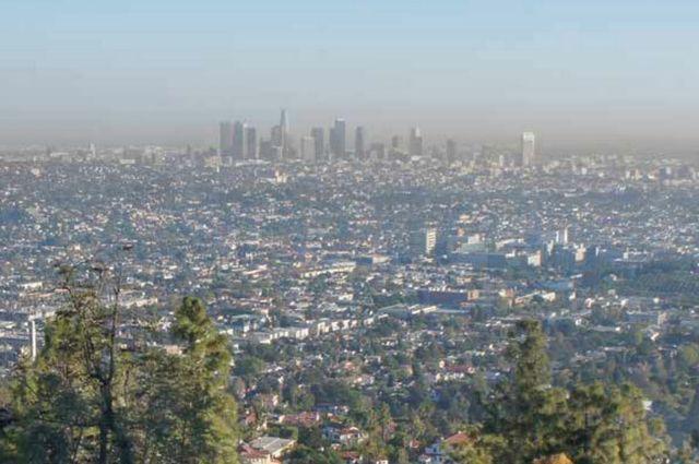 Smoggy skyline