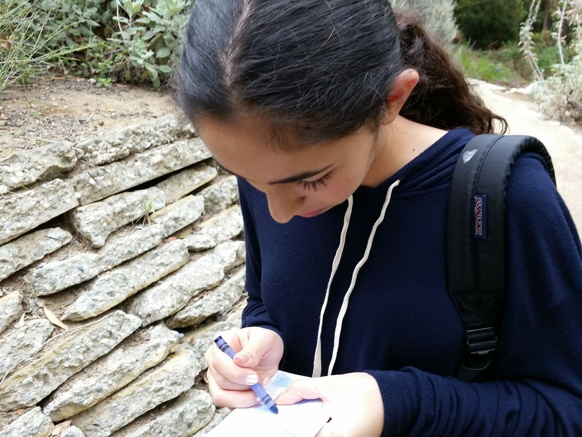 A student working on a UCLA 'Wallace Walk'