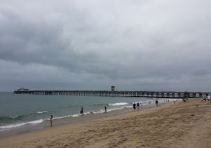 June gloom Seal Beach June 2013 - Darkest tree-Wikimedia Commons
