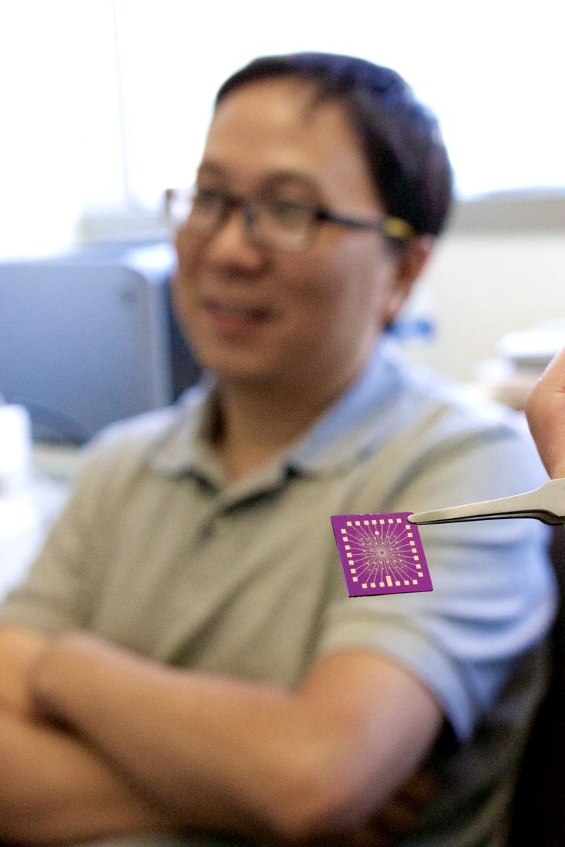 Nanoelectronic chip