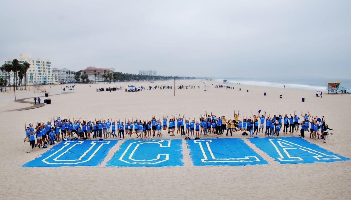 Volunteer Day 2010