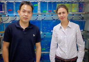 Sijie Lin and Olivia Osborne