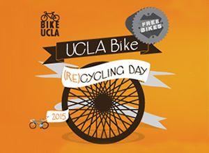 Bike Recycling Day 2015
