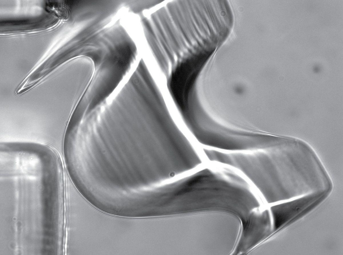 micro object