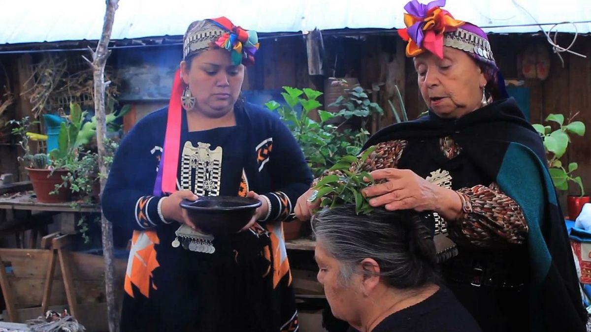 Mapuche medicine