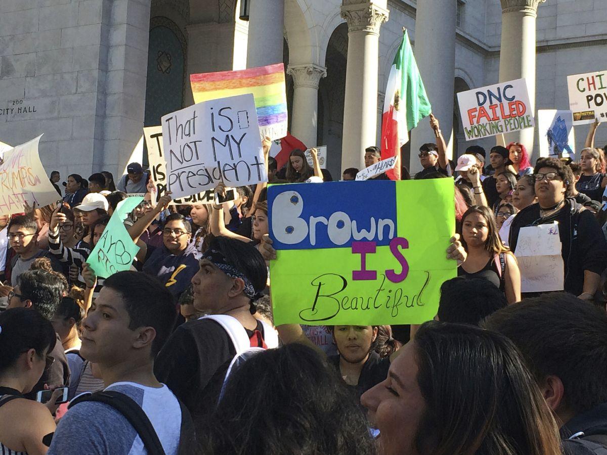 Trump Protests-Califo_Lee