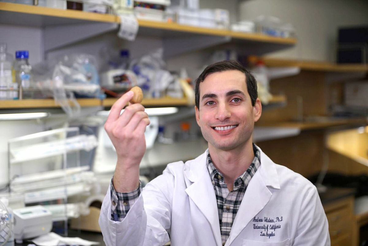 Dr. Andrew Goldstein