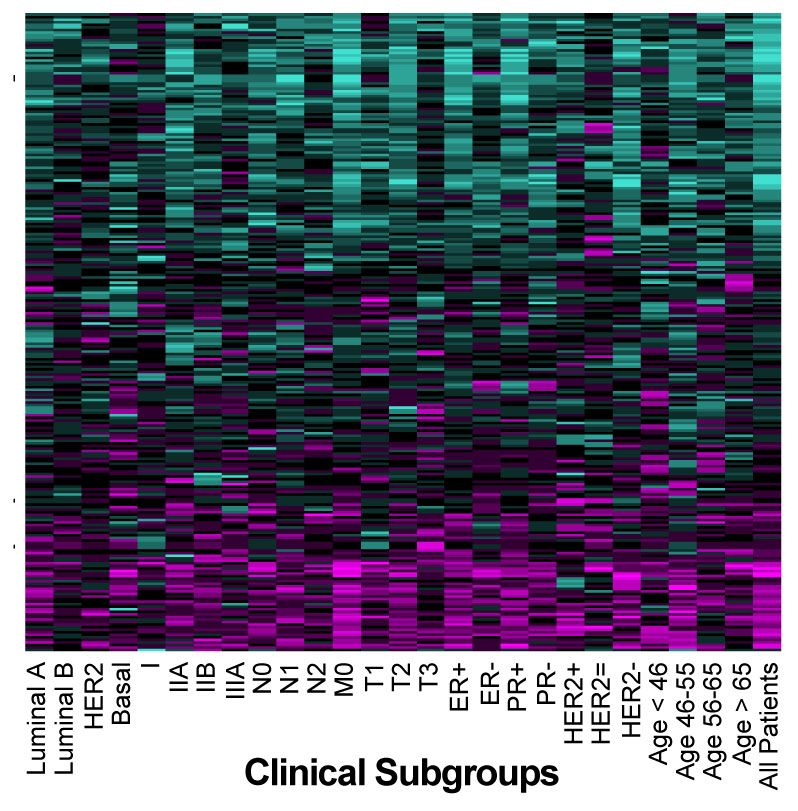 SURVIV analysis of breast cancer isoforms