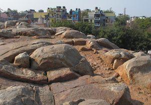 Ashokan edict Delhi