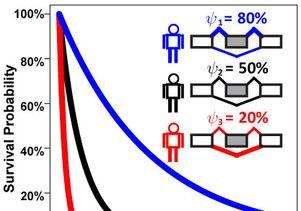 Isoform ratios