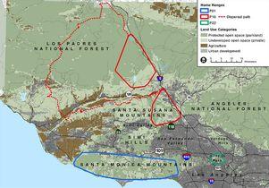 Mountain lion map