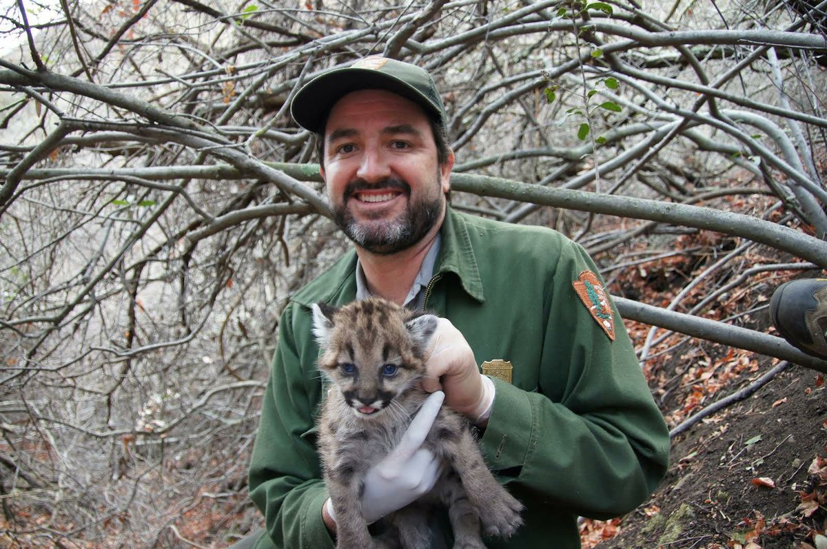 Seth Riley and mountain lion kitten