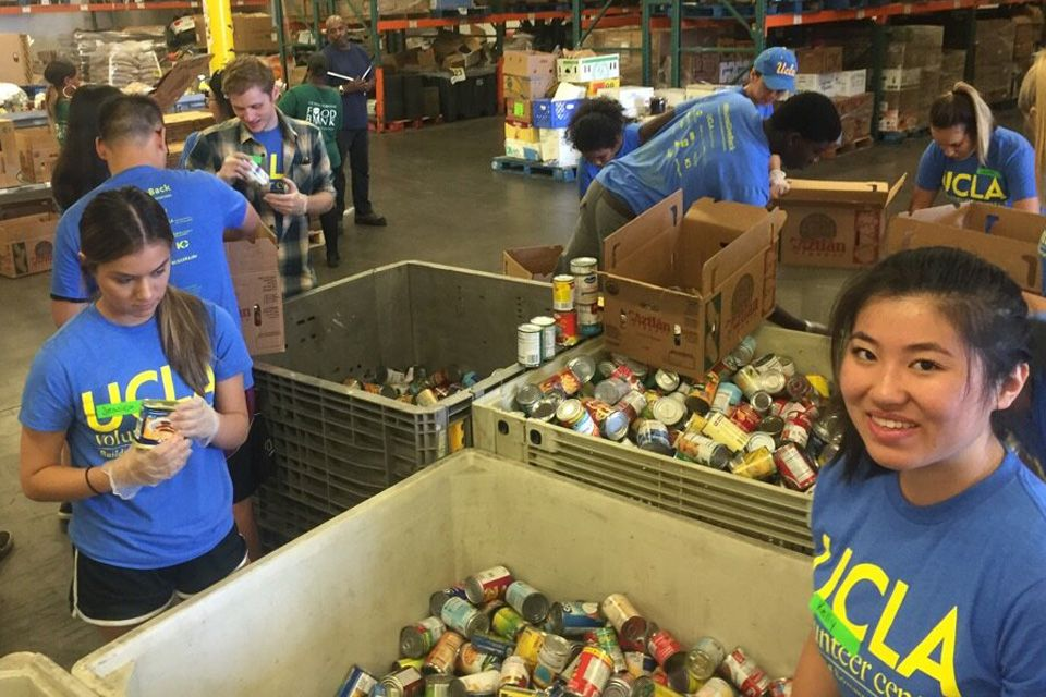 Volunteer Day 2016 food bank