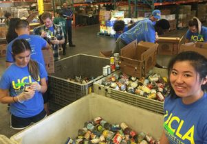 Click to open the large image: Volunteer Day 2016 food bank