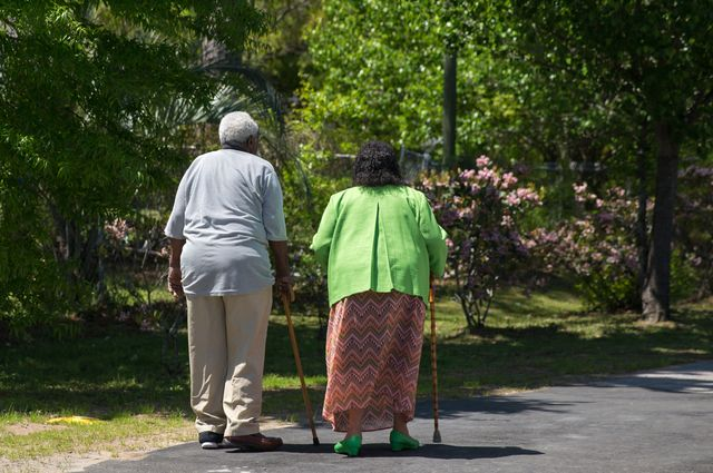 Elderly walkers