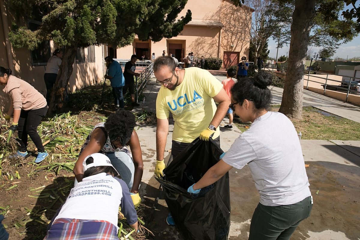 Mann UCLA Community School beautification