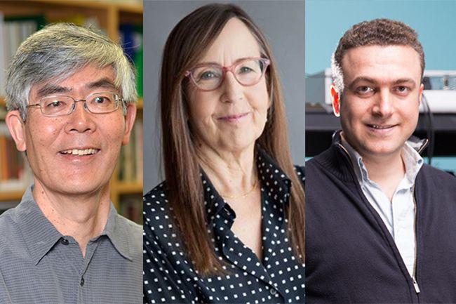 UCLA Guggenheim 2017 trio