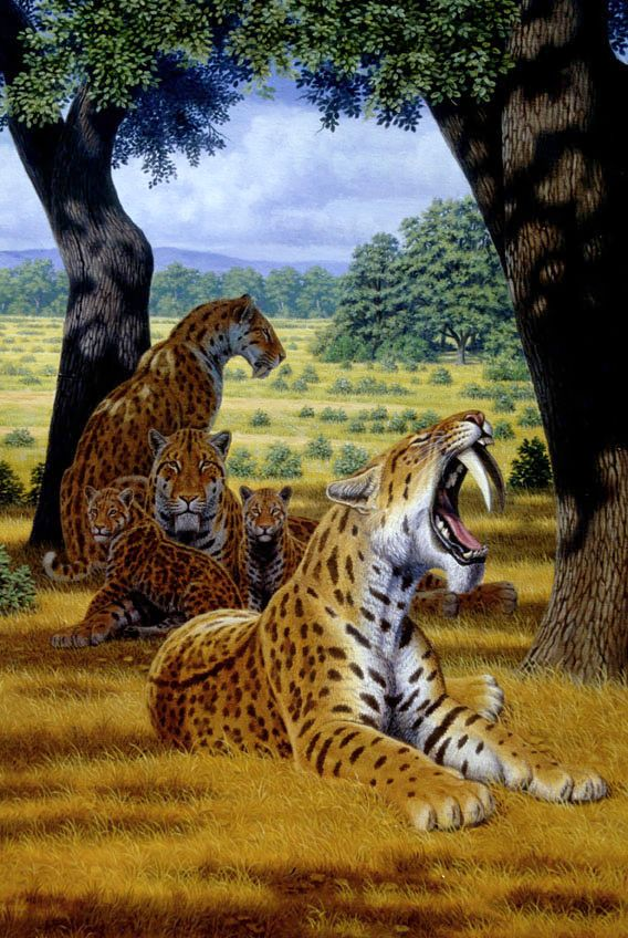 Saber-toothed cats with cubs illustration