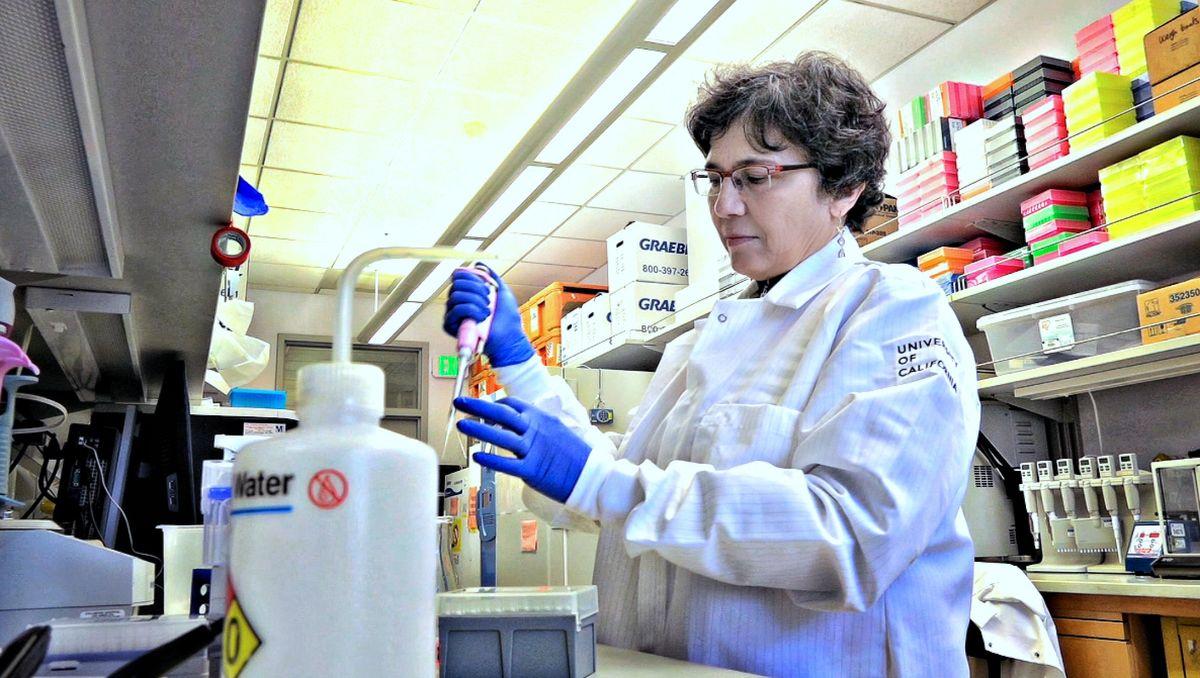 Aldrovandi in lab