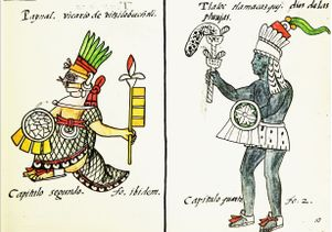 Drawings from the Florentine Codex