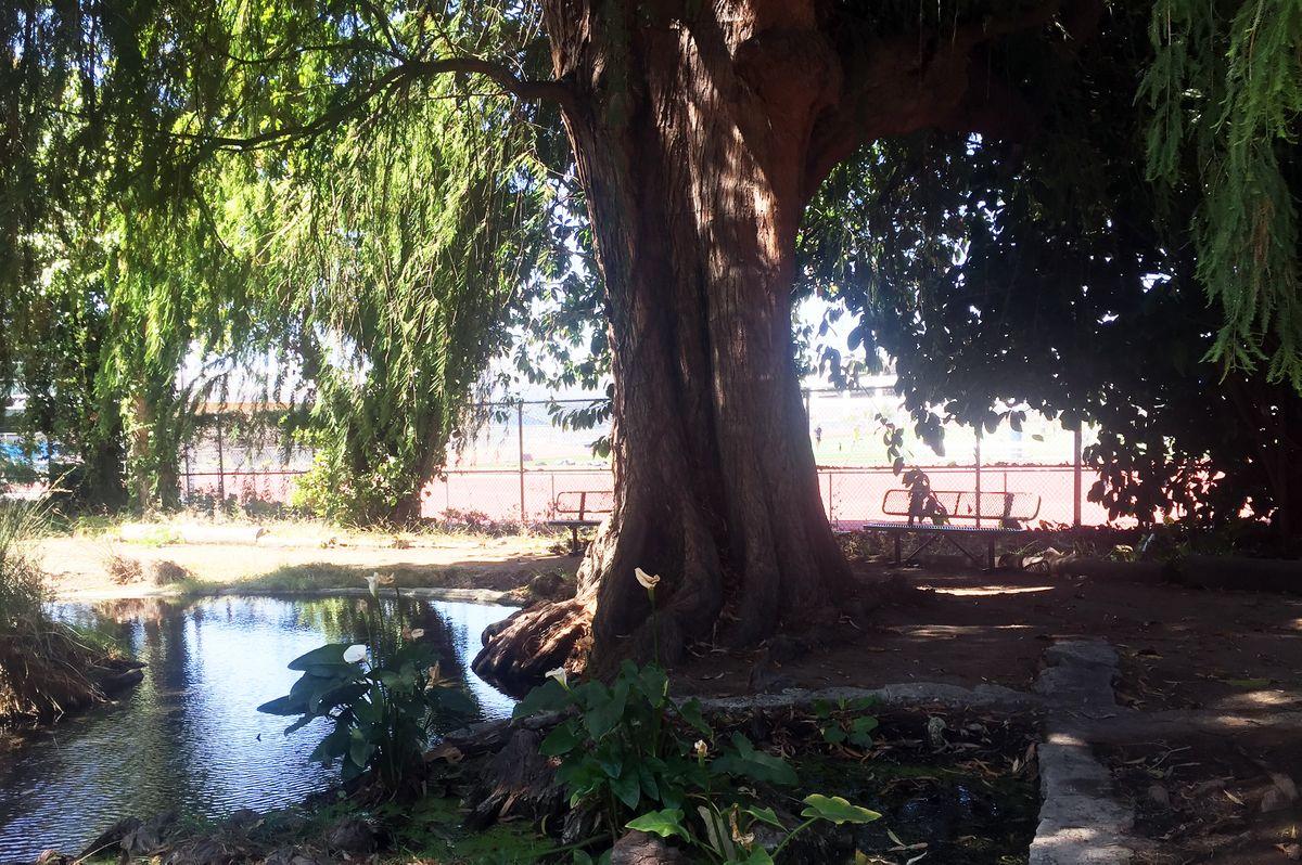 Kuruvungna Springs