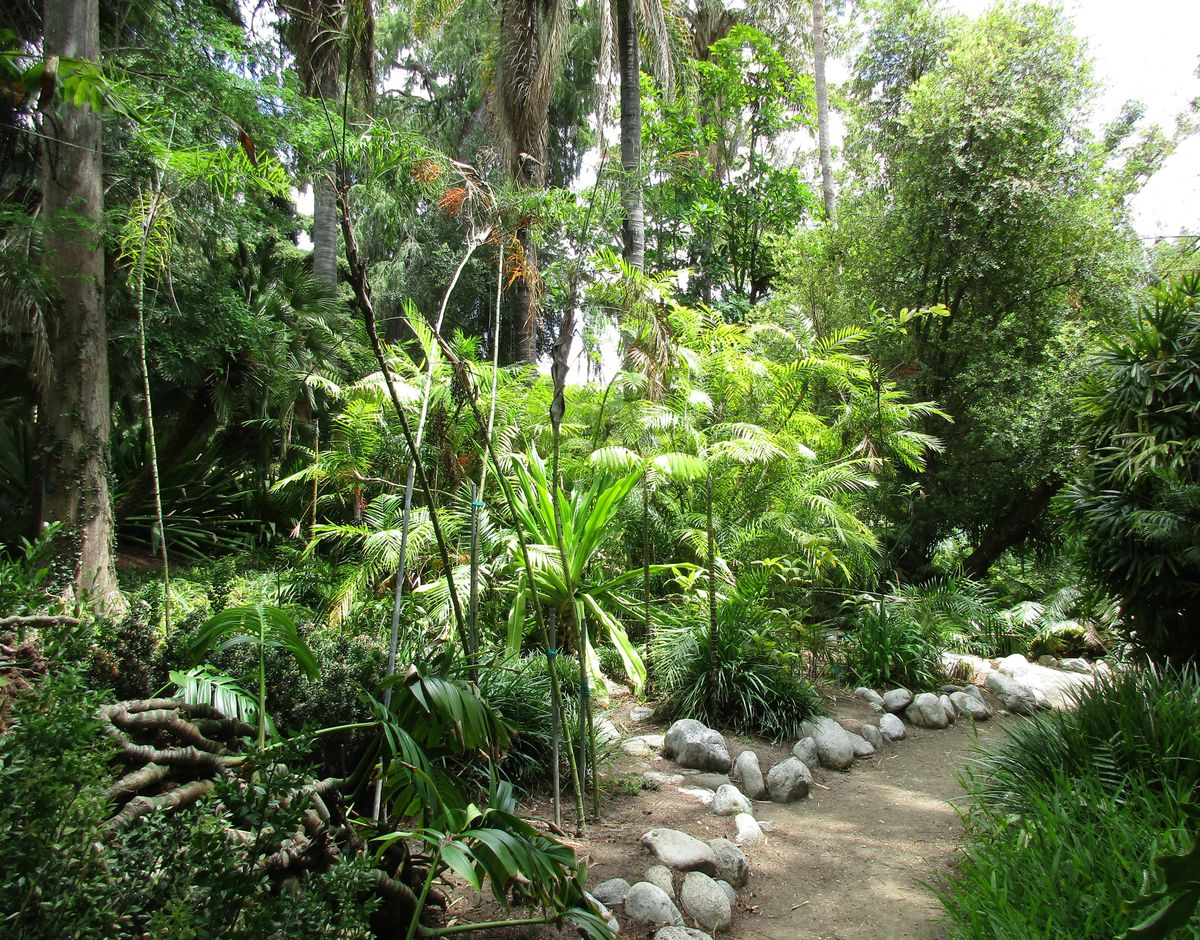 Mildred E. Mathias Botanical Garden