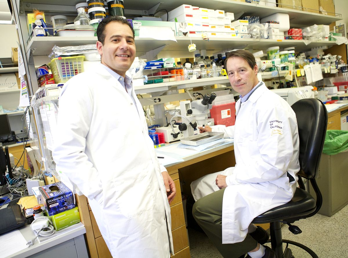 Tamer Sallam  and Peter Tontonoz