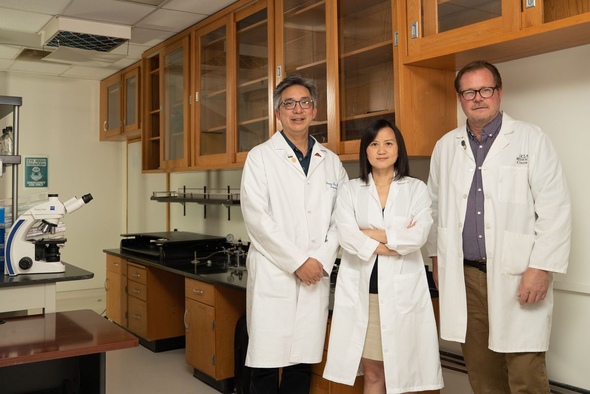 JCCC liver cancer researchers