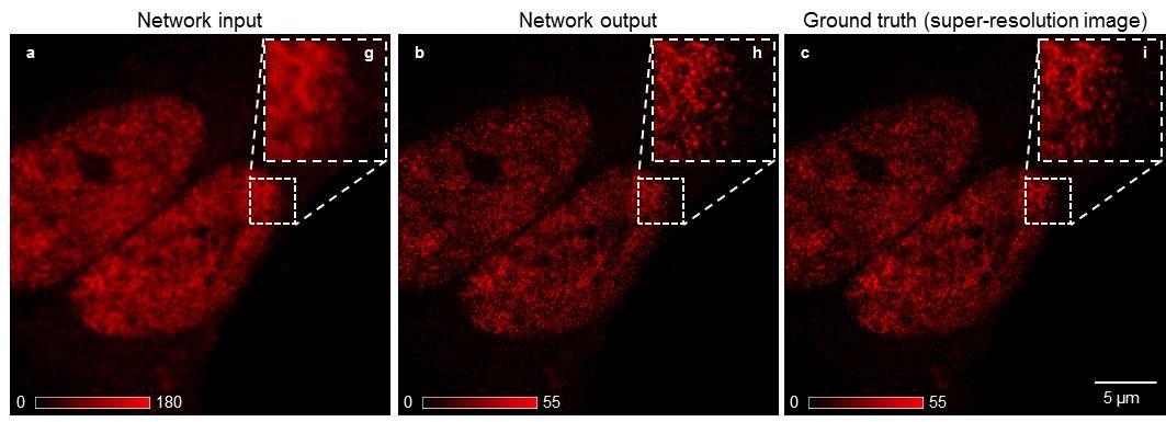 Nanoscale image comparison