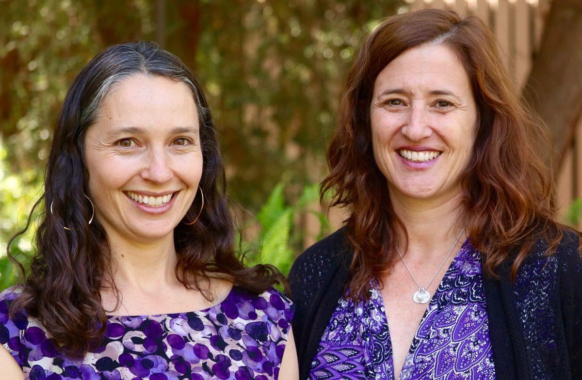 Elizabeth Barnert and Laura Abrams
