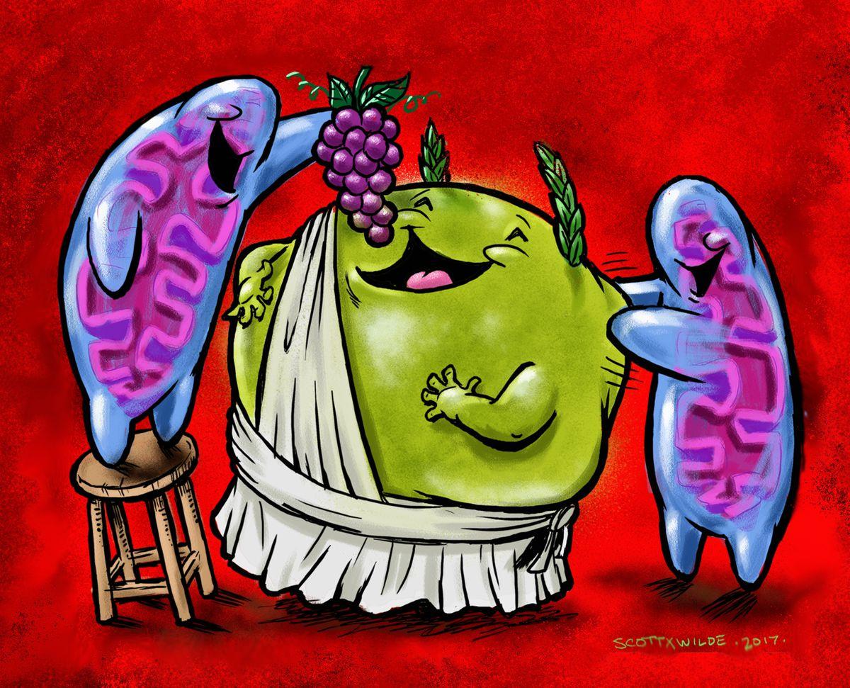 Mitochondria graphic
