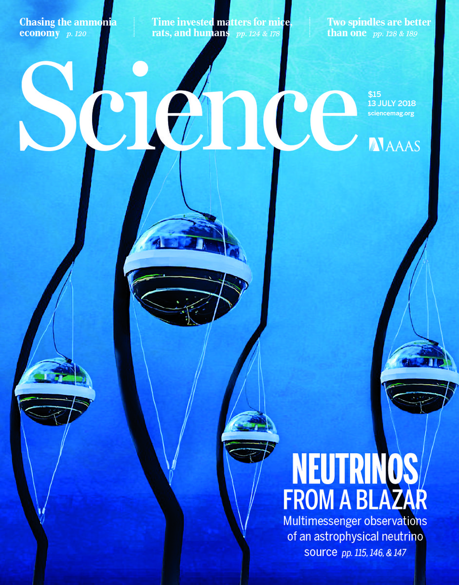 Science cover July 2018