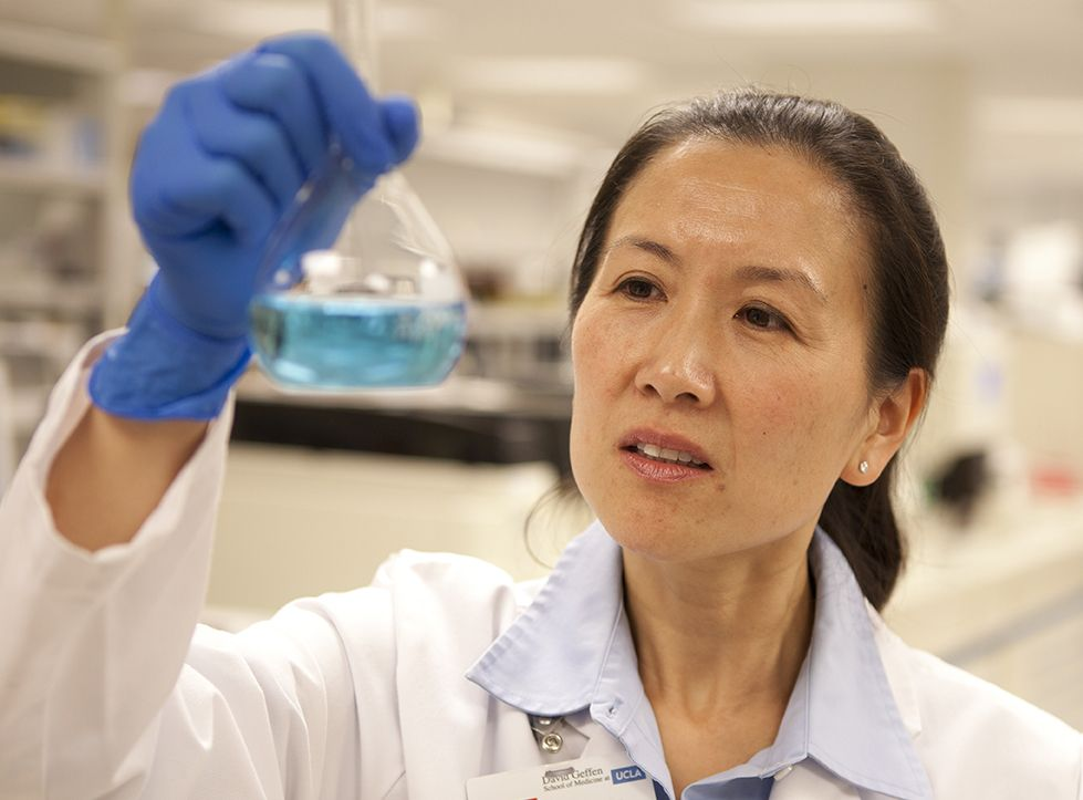 UCLA physician conducting research