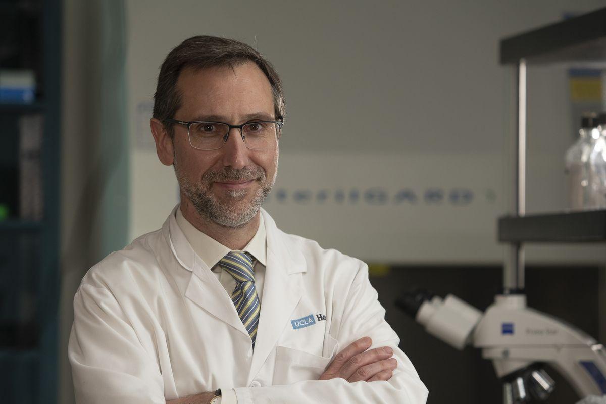 Dr. Antoni Ribas UCLA
