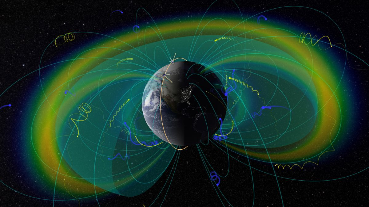 ELFIN radiation belt particles