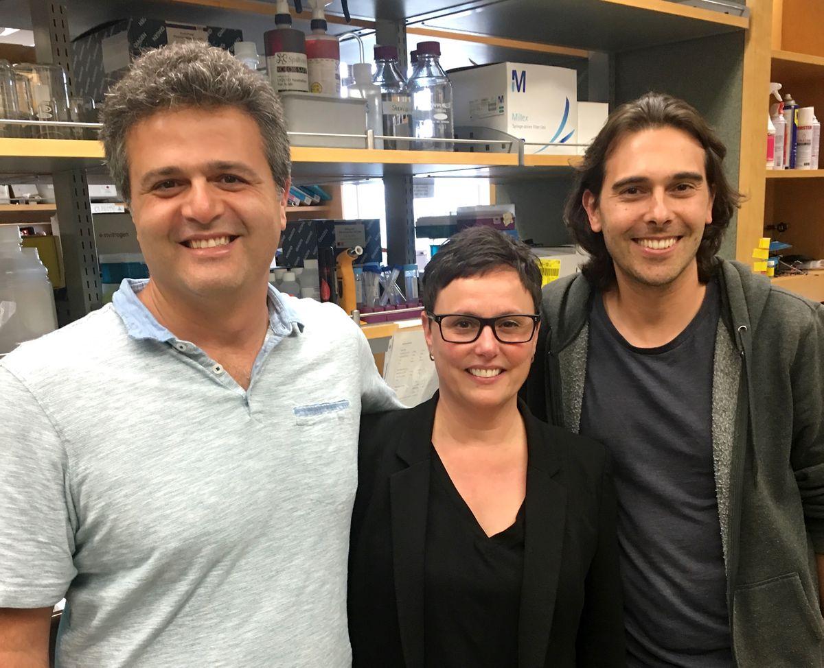 Dr. Peyman Golshani, Michele Basso and Daniel Aharoni